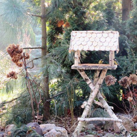 Karmnik Mój Piękny Ogród Ogrody Ozdobne Rośliny Kwiaty