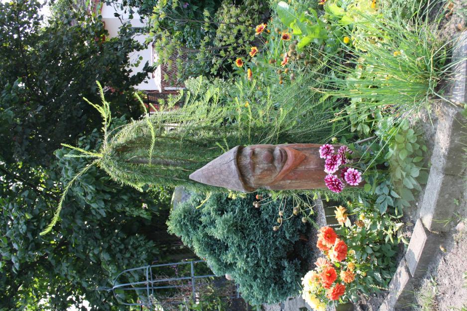 Piekny Ogrod Tanim Kosztem Moj Piekny Ogrod Ogrody Ozdobne Rosliny Kwiaty