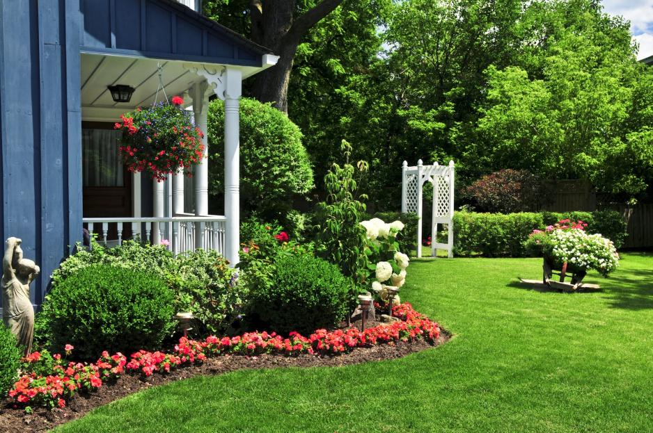 Ogród Przed Domem Mój Piękny Ogród Ogrody Ozdobne Rośliny Kwiaty