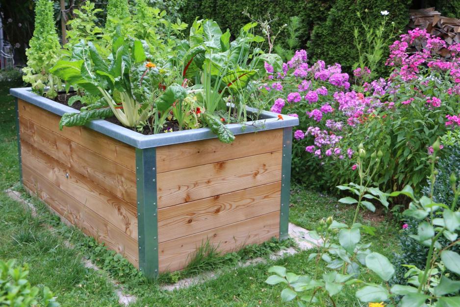 Miniogrodek Na Wzniesieniu Moj Piekny Ogrod Ogrody Ozdobne Rosliny Kwiaty